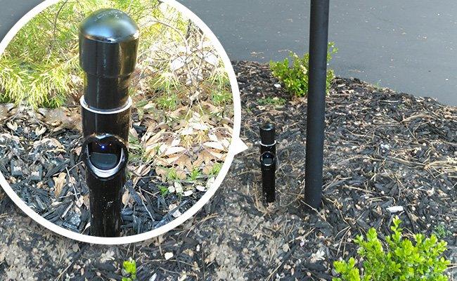 دوربین های نظارت بر پرندگان
