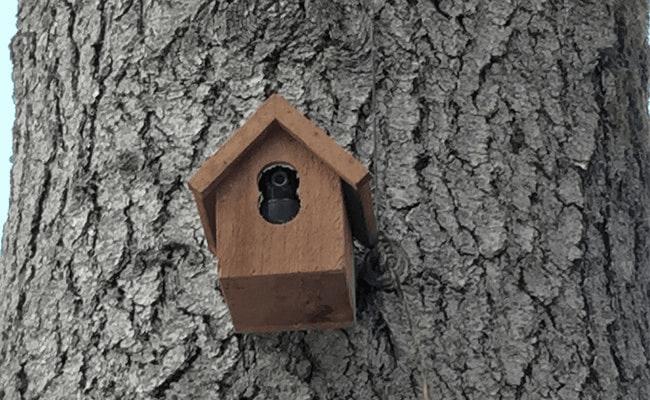 محافظت از دوربین امنیتی فضای باز