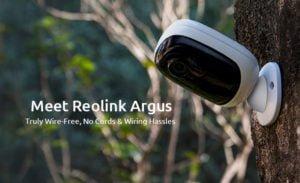 نحوه مشاهده دوربین های Reolink در مرورگر